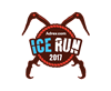 adrex ice run